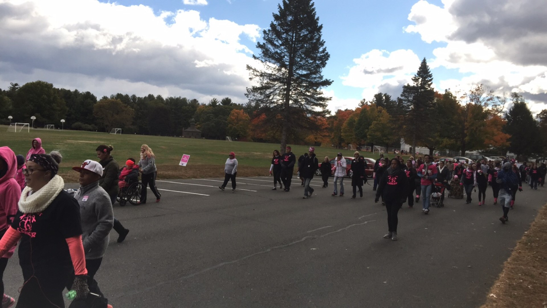Simply magnificent breast cancer walk springfield ma apologise