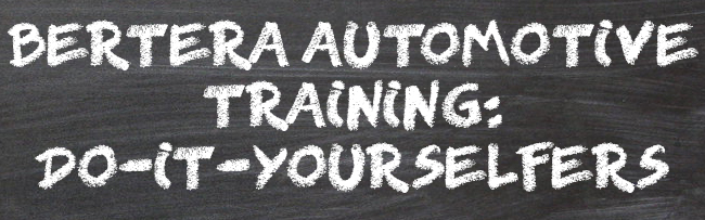 bLOG AUTO TRAINING
