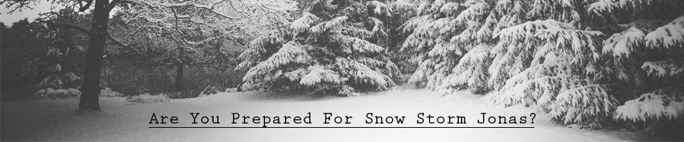 snowstormjonas