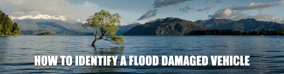 Chrysler_Identifying Flood Damage Vehicle